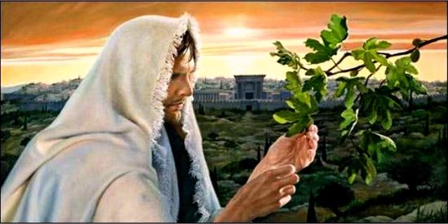 LECTIO DIVINA:  Marcos 13,24-32  33 DOMINGO DE TIEMPO ORDINARIO